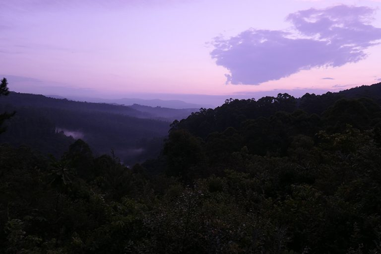Sunset in the Sabie Valley